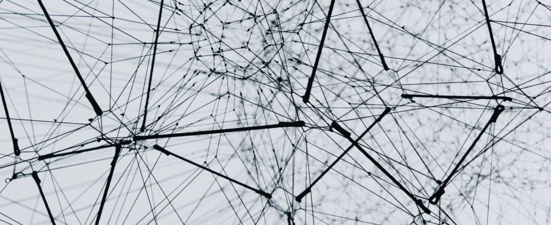 Visualisierung von Content Seeding und Backlink Netwerken